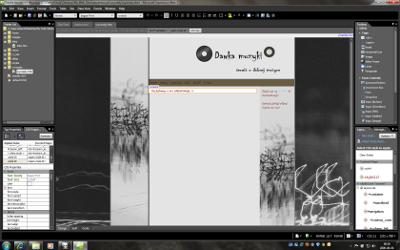 Prace nad nowym serwisem z wykorzystaniem Expression Studio 3